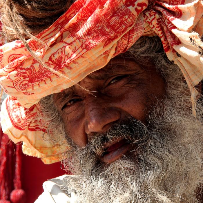 Inde, Rajasthan, 2008