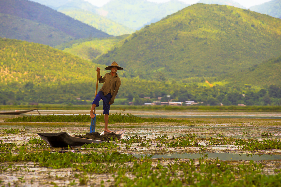 Birmanie, Lac Inlé, pêcheur, août 2009