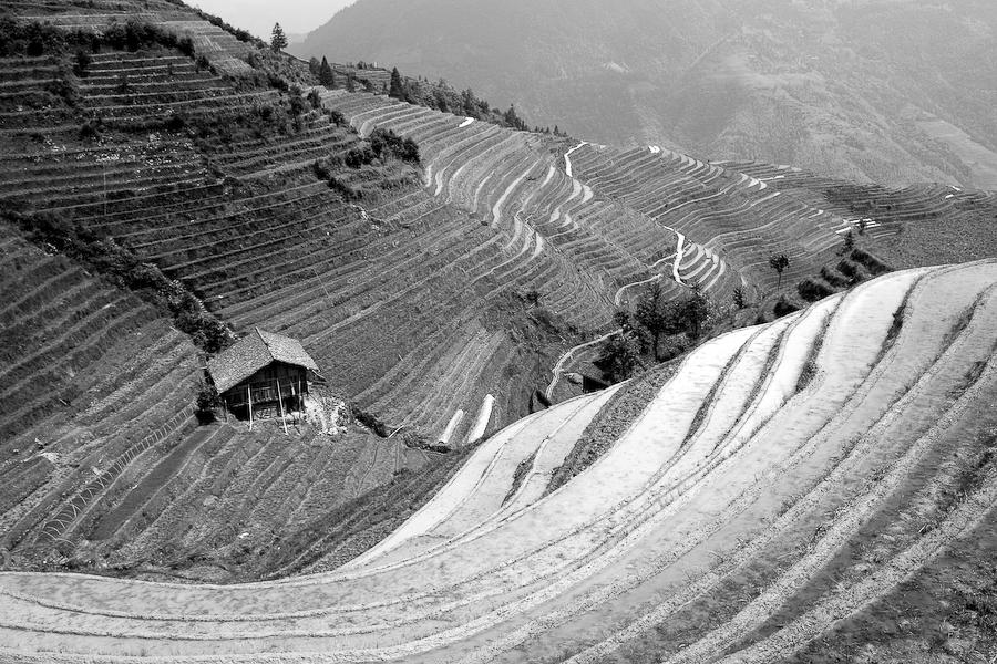 Chine, région de Guillin, mai 2007