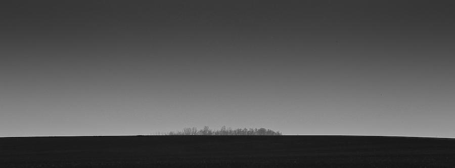 Et au milieu pousse une forêt ... Bourgogne, février 2011