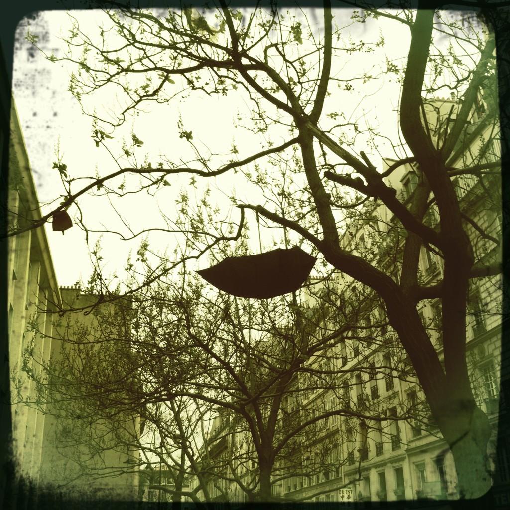 Les parapluies de Paris