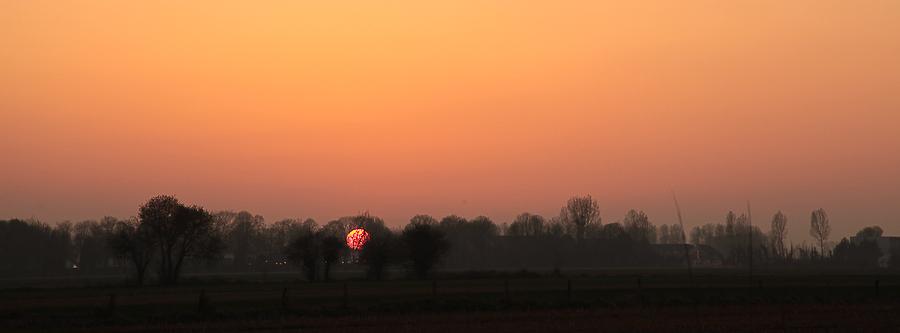 Un coucher de soleil accroché dans les arbres