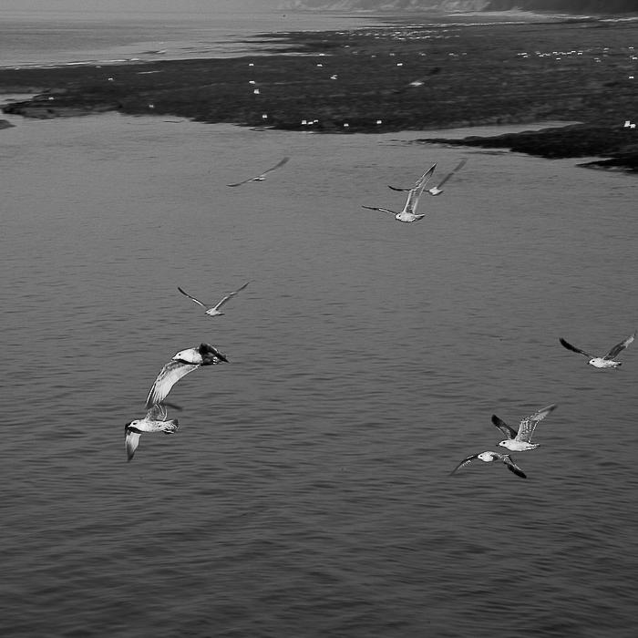Normandie 19