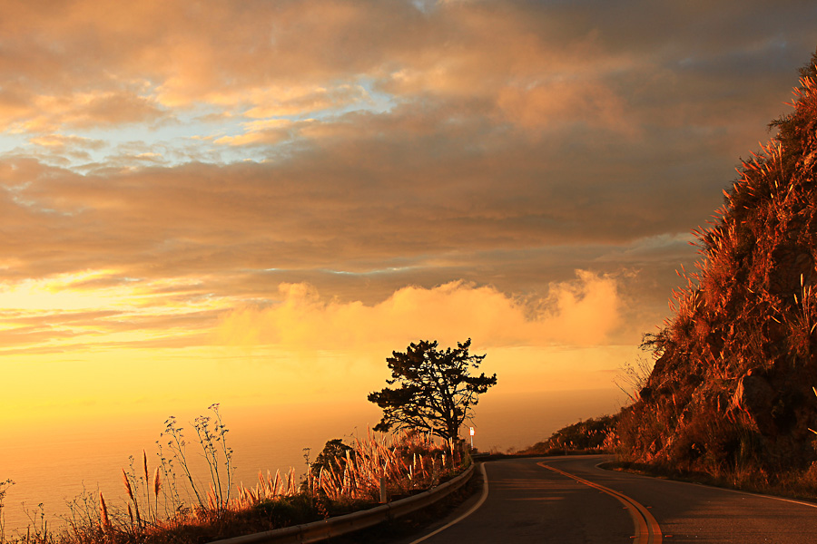 Pacific Coast Highway & Big Sur #6 - Californie