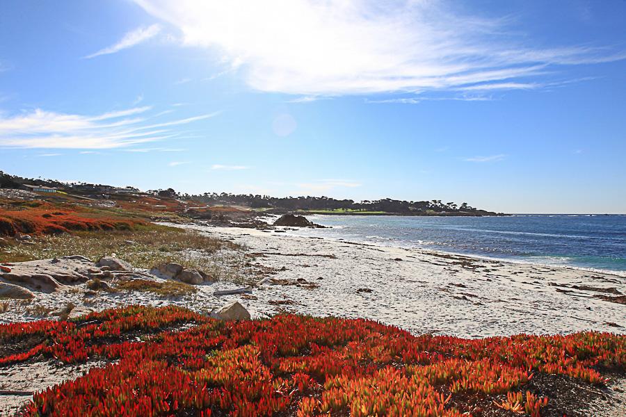Carmel #2 - Californie